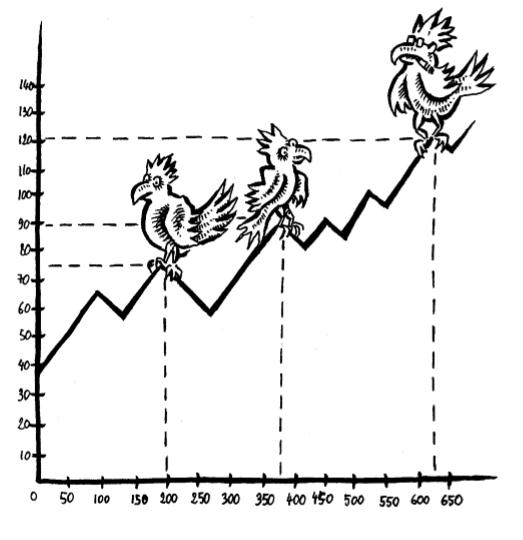 humour   le comptable et les perroquets